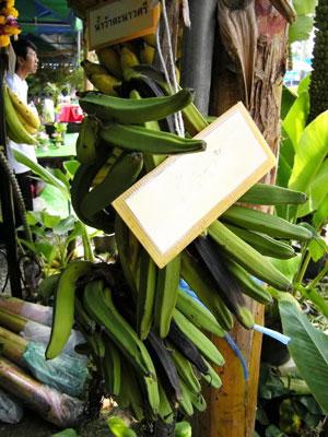 https://pictures.thailandplant.com/~images/bulb/2248_1.jpg